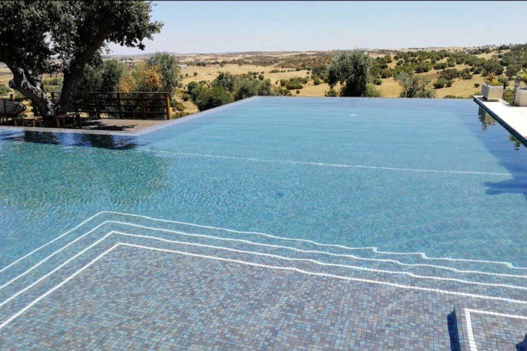 Aigua transparent amb mosaic de tons foscos
